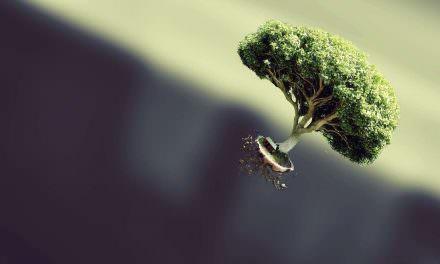 身是菩提树,心为明镜台。时时勤拂拭,勿使惹尘埃。是什么意思?